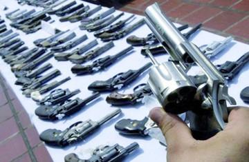 Gobierno anuncia una campaña de  desarme en el país