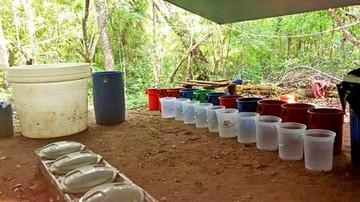 La Felcn destruye  laboratorio de  droga en el Chaco