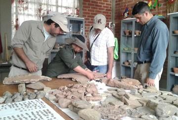 Equipo científico paleontológico adelanta que especies de la región son únicas