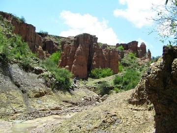 Encuentran nuevos fósiles de perezosos de pequeña estatura