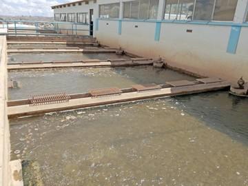 Elapas asegura dotación de agua durante fin de año