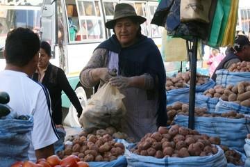 Bolivia cierra 2016 con una inflación de 4%