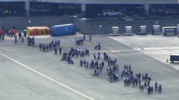 Cinco muertos en tiroteo en aeropuerto de Florida