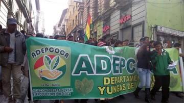 Cocaleros de Los Yungas protestan contra el proyecto de ley de la hoja de coca
