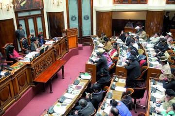 Coca: Legislativo sanciona ley que aumenta cultivos
