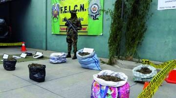 Destruyen más de 5 toneladas de droga en el Valle