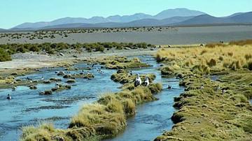 Chile ratifica su postura sobre las aguas del Silala