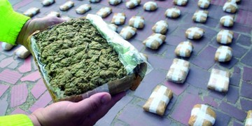Colombianos con marihuana van a penal