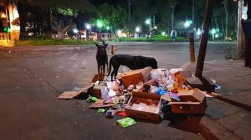 Se retrasa la llegada de contenedores de basura
