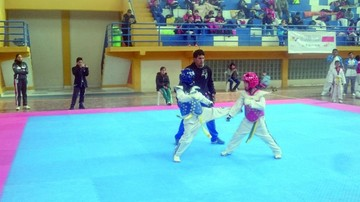 Open de Taekwondo, una oportunidad para crecer