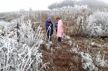 Nevada y descenso brusco de temperaturas sorprende a municipios de Chuquisaca