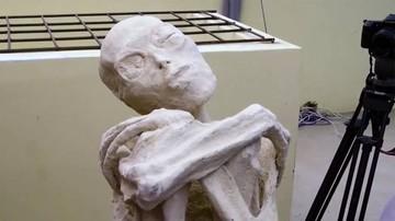 """El enigma de la """"momia extraterrestre"""" de Nazca"""