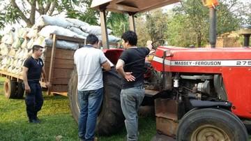 Paraguay: Deforestar para producir carbón