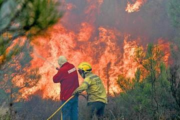 Portugal decreta estado de calamidad por fuego