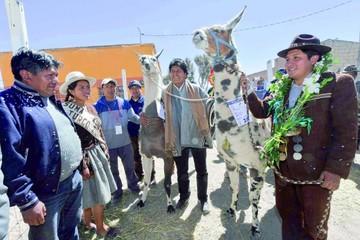 Morales exigirá que FFAA repasen historia del país