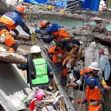 México: Aún queda esperanza de hallar gente bajo las ruinas