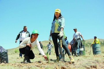 Proyectan área verde en alrededores de Alcantarí