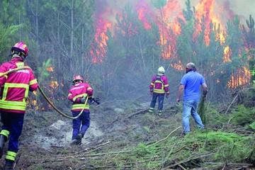 Portugal y España sufren mortífera ola de incendios