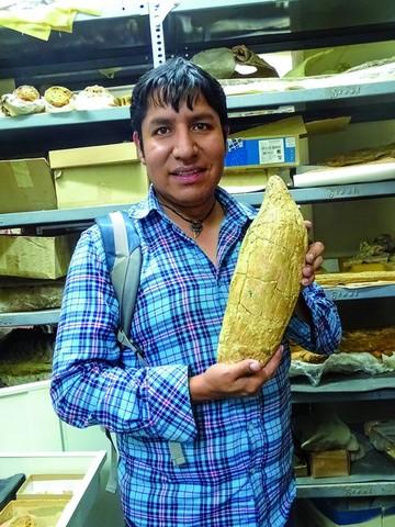 Fósiles en Bolivia y Perú