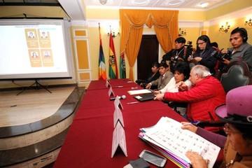TSE podría oficializar decisión de multar la campaña del voto nulo
