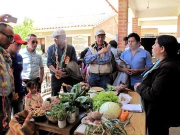 Desarrollo territorial: Experiencia en Alcalá, Sopachuy y El Villar