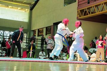 Karate llega hoy a su epílogo