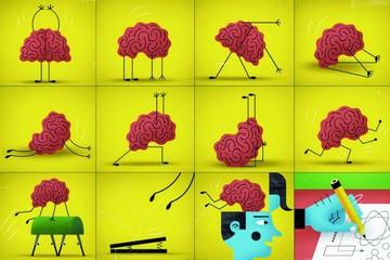 Las neuronas sí se regeneran