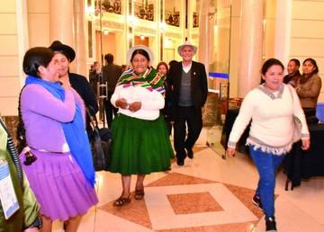 El MAS apuesta  por continuidad en la Asamblea