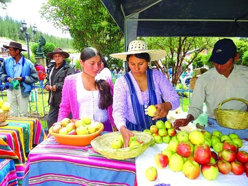 Azurduy recibe Bs 200 mil por su manzana cada año
