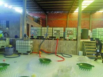 Desmantelan fábrica ilegal  de alcohol adulterado