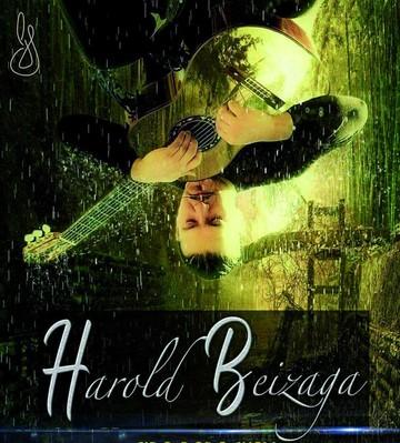 Harold Beizaga y la creación artística