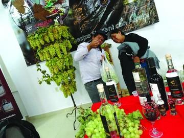Éxito en festival de vinos
