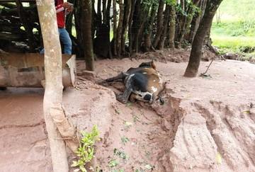 Muyupampa se suma a los municipios afectados por las persistentes lluvias