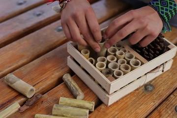 Estudiantes crean un hotel para proteger a las abejas