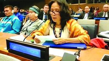 Indígenas piden en la ONU que respeten sus derechos