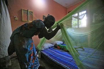 OMS advierte retraso en lucha contra la malaria