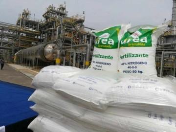 Gobierno confirma paralización de planta de urea