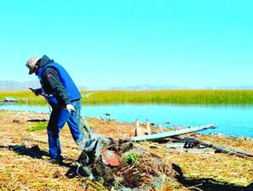 Contaminación en el lago Titicaca afecta a ganado