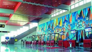 Aeropuerto más vacío de todos pierde últimos vuelos