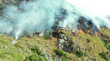 Focos de calor movilizan brigadas de emergencia