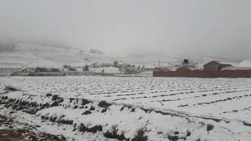 Tarabuco se tiñe de blanco por la caída de nieve en época invernal
