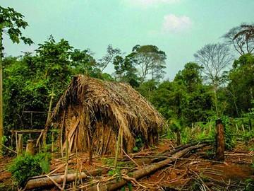 En el Amazonas vive el hombre más solitario del mundo