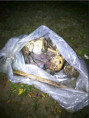 Encuentran restos de persona perdida hace seis meses