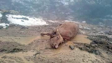 La lluvia y el granizo afectan a Padilla y Monteagudo