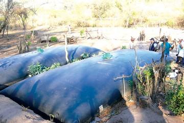 Chuquisaca: Municipios son afectados por sequía