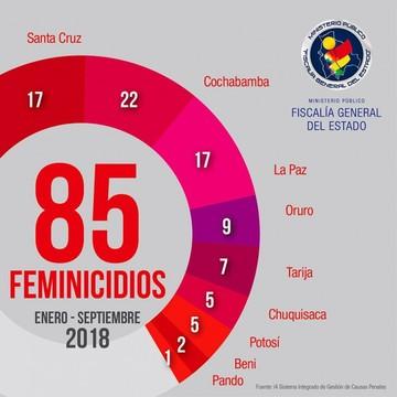 Feminicidios: Al menos dos mujeres mueren cada semana en el país