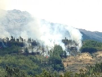 Punilla: Incendio devora  15 hectáreas de bosque