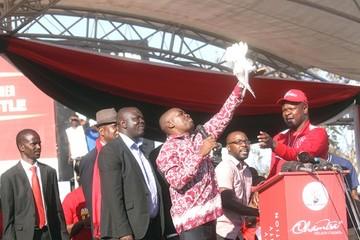 Zimbabue: Opositor se autoproclama Primer Mandatario