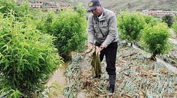 Lluvias en Cochabamba dañan casas y carretera