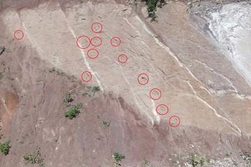 Encuentran huellas de dinosaurio al borde de la carretera en Muyupampa